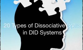 20 Types of Dissociative Splits
