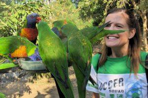 Rainbow Birds! Oh so pretty!