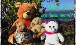 Who are these bears?
