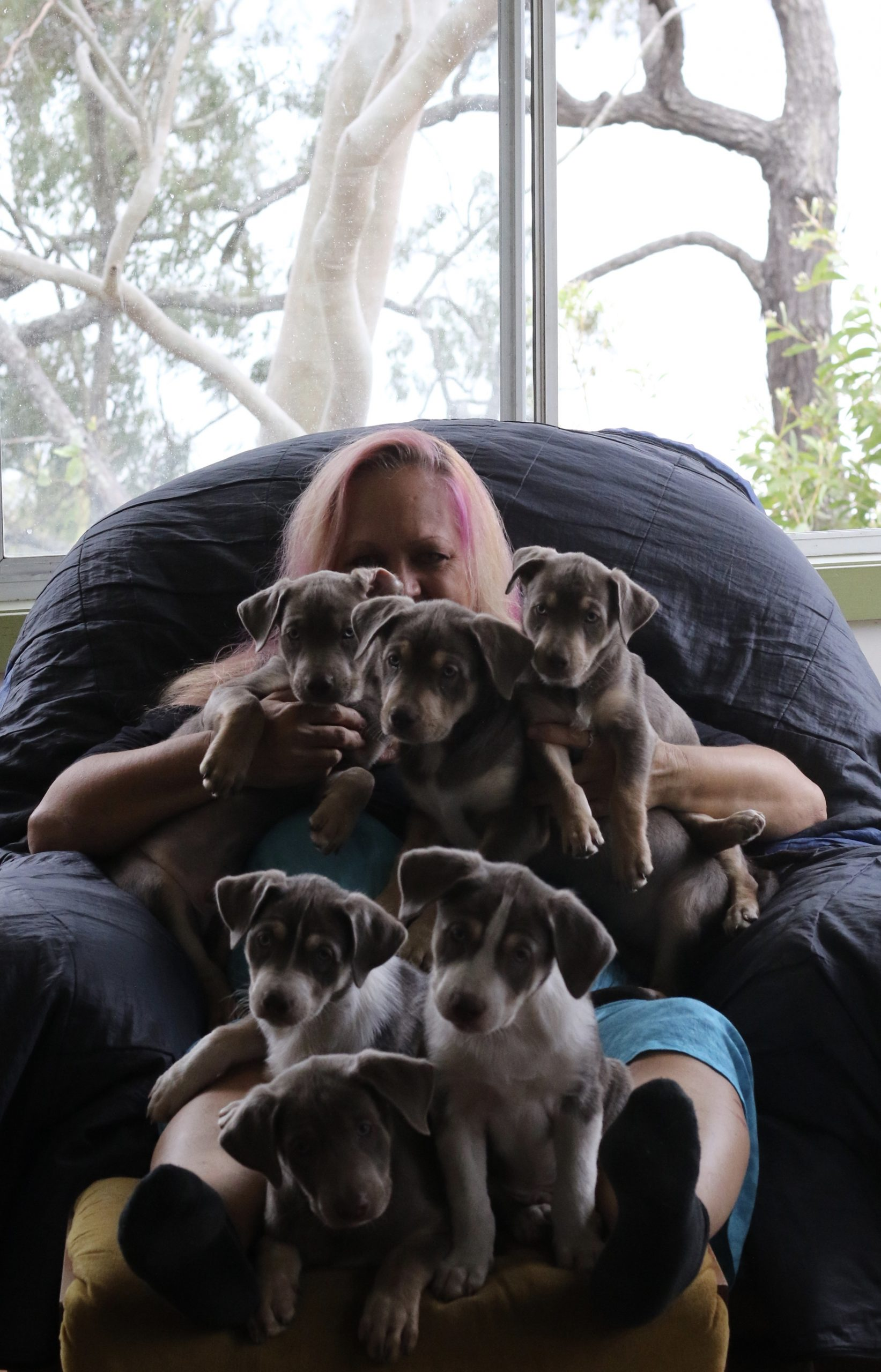 Kathy Broady with puppies